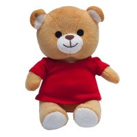 Teddybär Maskottchen für Kinder  Werbeartikel